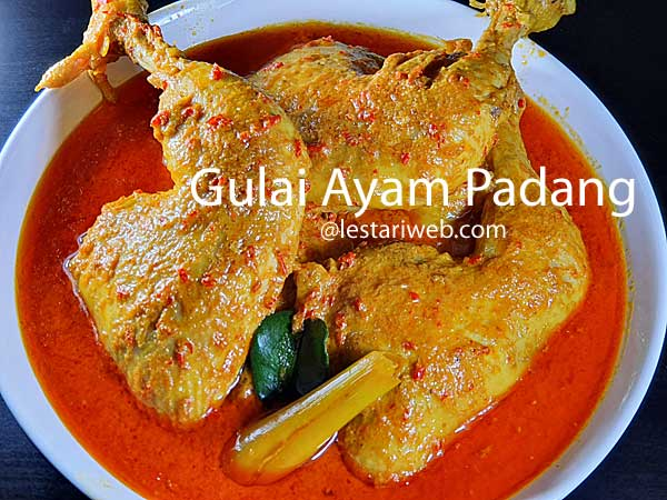 Padang Chicken Curry