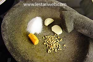 garlic, koriander, turmeric and salt