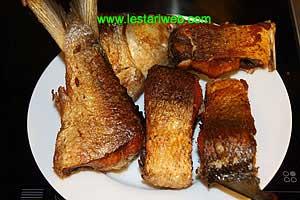until fish is golden brown