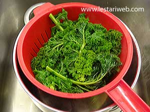 set curly kale aside to drain